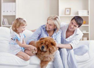 Mieszkanie idealne dla młodej rodziny